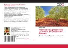 Bookcover of Producción Agropecuaria y Forestal en Ultisoles de Panamá