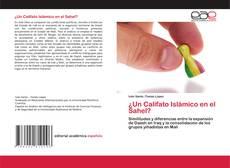 Bookcover of ¿Un Califato Islámico en el Sahel?