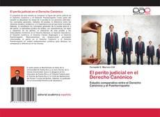 Buchcover von El perito judicial en el Derecho Canónico