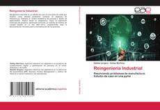 Bookcover of Reingeniería Industrial