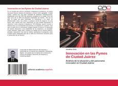 Bookcover of Innovación en las Pymes de Ciudad Juárez