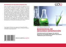 Bookcover of BIOENERGÍA DE SEGUNDA GENERACIÓN