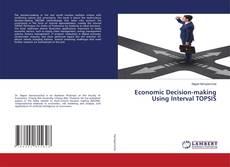Economic Decision-making Using Interval TOPSIS kitap kapağı
