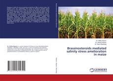 Обложка Brassinosteroids mediated salinity stress amelioration in maize