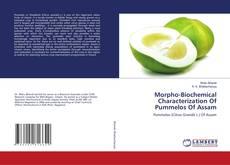 Couverture de Morpho-Biochemical Characterization Of Pummelos Of Assam