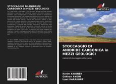 Bookcover of STOCCAGGIO DI ANIDRIDE CARBONICA in MEZZI GEOLOGICI