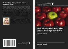 Copertina di Inclusión y discapacidad visual en segundo nivel