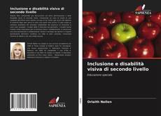Copertina di Inclusione e disabilità visiva di secondo livello