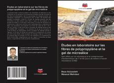 Bookcover of Études en laboratoire sur les fibres de polypropylène et le gel de microsilice
