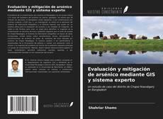 Capa do livro de Evaluación y mitigación de arsénico mediante GIS y sistema experto