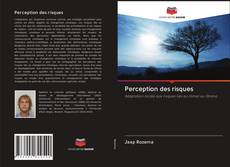 Bookcover of Perception des risques