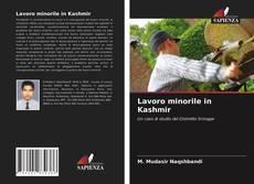 Lavoro minorile in Kashmir的封面