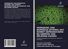 Bookcover of VERRIJKING VAN BIOMASSA-ZETMEEL DAT WORDT GEPRODUCEERD BIJ GEBRUIK VAN DELEMNA-VIJVERS
