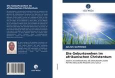Bookcover of Die Geburtswehen im afrikanischen Christentum