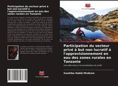 Bookcover of Participation du secteur privé à but non lucratif à l'approvisionnement en eau des zones rurales en Tanzanie