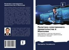 Bookcover of Политика электронного правительства в Монголии
