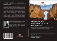ANTHROPOLOGIE SOCIOCULTURELLE AU MOZAMBIQUE的封面