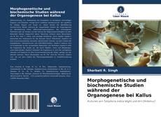 Обложка Morphogenetische und biochemische Studien während der Organogenese bei Kallus