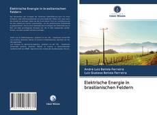 Portada del libro de Elektrische Energie in brasilianischen Feldern