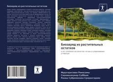 Buchcover von Биозаряд из растительных остатков