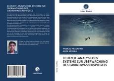 Capa do livro de ECHTZEIT-ANALYSE DES SYSTEMS ZUR ÜBERWACHUNG DES GRUNDWASSERSPIEGELS