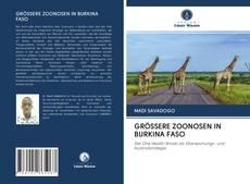 Bookcover of GRÖSSERE ZOONOSEN IN BURKINA FASO