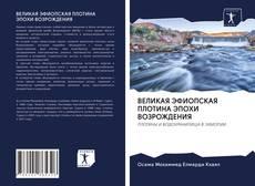 Capa do livro de ВЕЛИКАЯ ЭФИОПСКАЯ ПЛОТИНА ЭПОХИ ВОЗРОЖДЕНИЯ