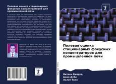 Portada del libro de Полевая оценка стационарных фокусных концентраторов для промышленной печи