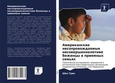 Portada del libro de Американские несопровождаемые несовершеннолетние беженцы в приемных семьях
