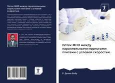 Поток MHD между параллельными пористыми плитами с угловой скоростью的封面