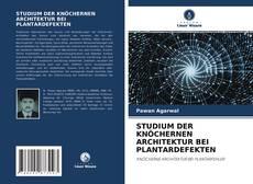 STUDIUM DER KNÖCHERNEN ARCHITEKTUR BEI PLANTARDEFEKTEN的封面