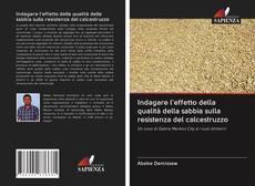 Обложка Indagare l'effetto della qualità della sabbia sulla resistenza del calcestruzzo