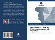HAUSGEBURT: Status, Wahrnehmungen und Praktiken kitap kapağı