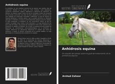 Bookcover of Anhidrosis equina