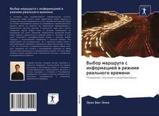 Bookcover of Выбор маршрута с информацией в режиме реального времени