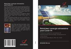 Bookcover of Rolnictwo i energia odnawialna post Covid-19: