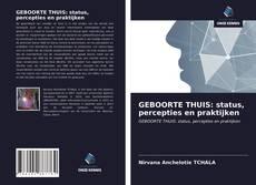 GEBOORTE THUIS: status, percepties en praktijken kitap kapağı