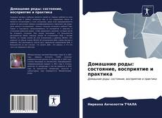 Bookcover of Домашние роды: состояние, восприятие и практика