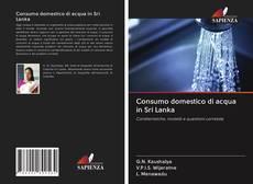Bookcover of Consumo domestico di acqua in Sri Lanka