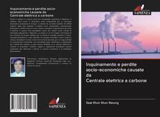 Copertina di Inquinamento e perdite socio-economiche causate da Centrale elettrica a carbone