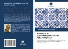 KINETIK VON SINTERMATERIALIEN FÜR KERAMIKFLIESEN kitap kapağı