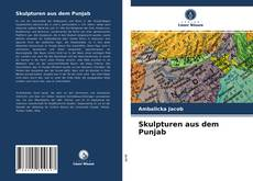 Bookcover of Skulpturen aus dem Punjab