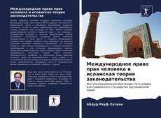 Bookcover of Международное право прав человека и исламская теория законодательства