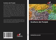 Sculture del Punjab的封面