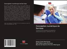 Buchcover von Conception numérique de Sorrioso