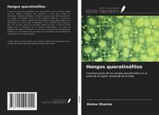 Buchcover von Hongos queratinófilos