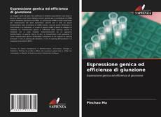 Bookcover of Espressione genica ed efficienza di giunzione