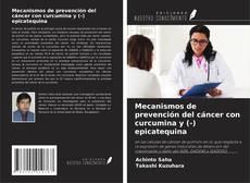 Couverture de Mecanismos de prevención del cáncer con curcumina y (-) epicatequina