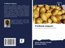 Buchcover von Учебный модуль