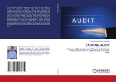 BANKING AUDIT kitap kapağı